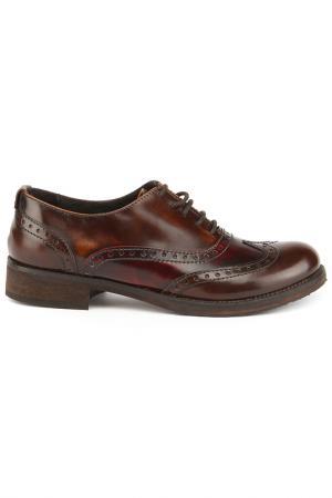 Ботинки Alessandro. Цвет: темно-коричневый