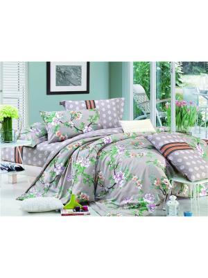 Постельное белье Shanti 1,5 сп. Amore Mio. Цвет: коричневый, зеленый, розовый