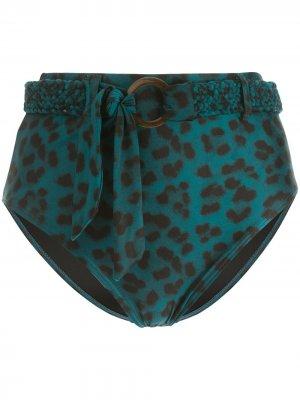 Трусы-брифы с леопардовым принтом и поясом Duskii. Цвет: синий