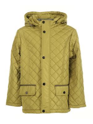 Куртки Arista. Цвет: оливковый