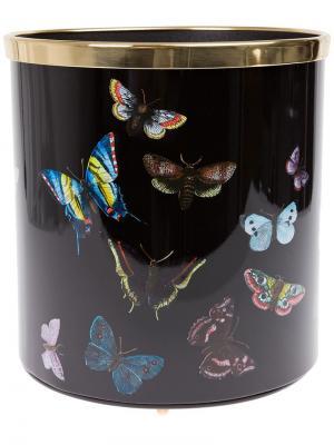 Урна для мусора Butterfly с золотистой окантовкой Fornasetti. Цвет: черный