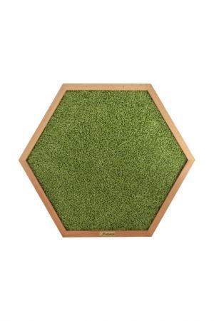 Когтеточка 58х50х3 см BEDFOR. Цвет: зеленый