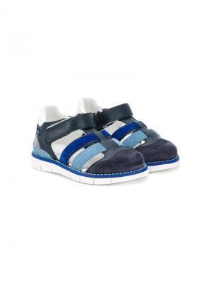 Спортивные сандалии Hogan Kids. Цвет: синий