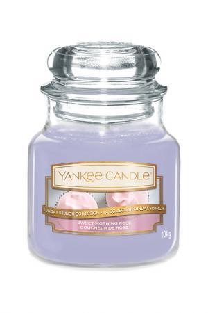 Свеча Утренняя роза YANKEE CANDLE. Цвет: голубой