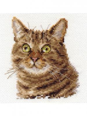Набор для вышивания Европейский кот 11х12 см Алиса. Цвет: зеленый, коричневый, светло-коричневый, светло-серый
