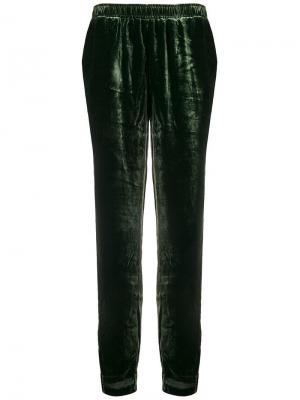 Бархатные спортивные брюки Gold Hawk. Цвет: зеленый