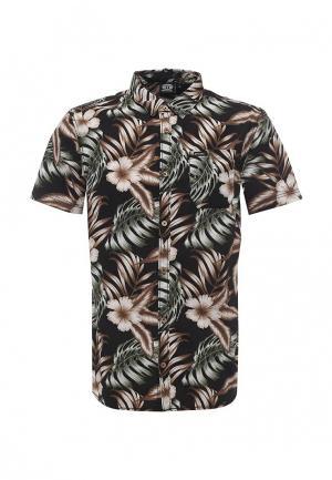 Рубашка Animal. Цвет: черный