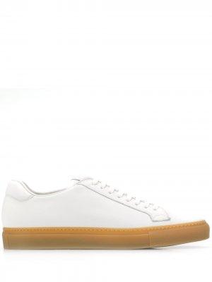 Кеды на шнуровке Scarosso. Цвет: белый