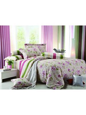 Постельное белье Sangriai 2,0 сп. Amore Mio. Цвет: бежевый, зеленый, розовый