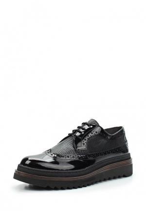 Ботинки Alesya. Цвет: черный