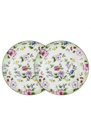 Набор из 2-х суповых тарелок Colombo. Цвет: мультиколор