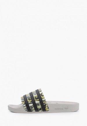 Сланцы adidas Originals. Цвет: серый