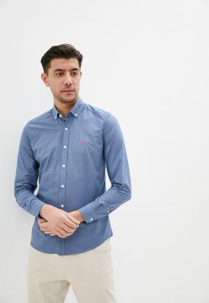 Рубашка Giorgio Di Mare. Цвет: голубой