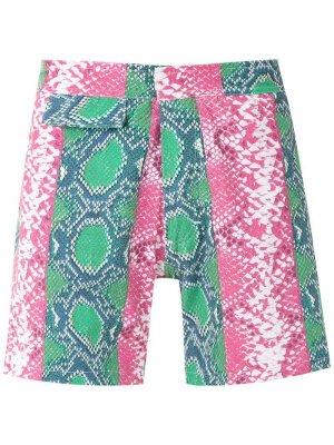 Плавки-шорты с принтом Amir Slama. Цвет: разноцветный