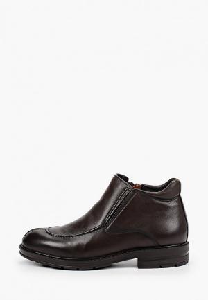 Ботинки Marco Lippi. Цвет: коричневый