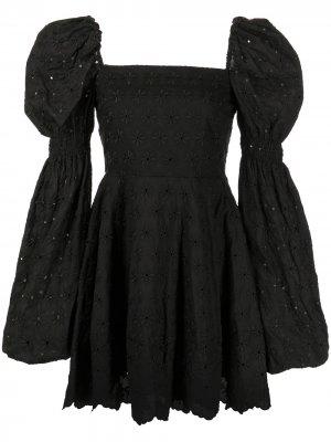 Платье мини Wren с вышивкой Caroline Constas. Цвет: черный
