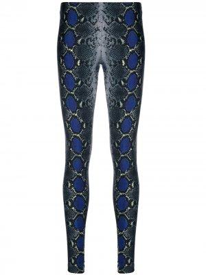 Легинсы со змеиным принтом Versace. Цвет: серый