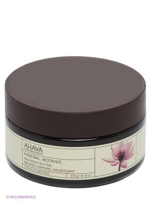 Крем-масло для тела AHAVA. Цвет: прозрачный