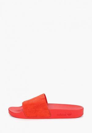 Сланцы adidas Originals. Цвет: красный