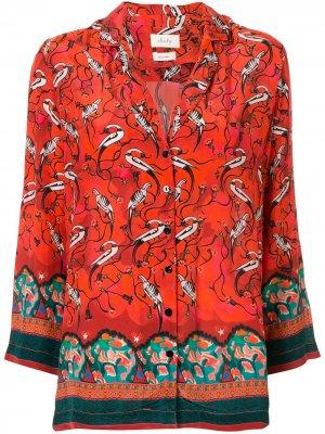 Рубашка Najima с принтом Chufy. Цвет: оранжевый