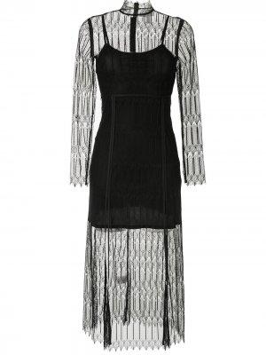 Платье миди Do Magic с кружевом Alice McCall. Цвет: черный