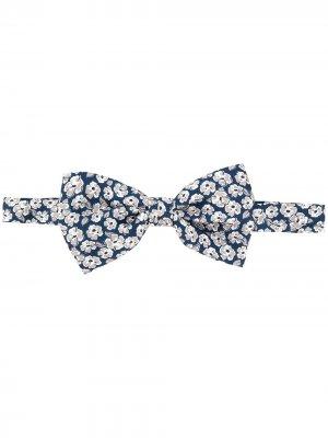 Галстук-бабочка с цветочным принтом Canali. Цвет: синий